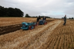 dave-buttriss-on-his-ransome-mgs-1952-working-his-single-furrow-ts-42-plough-2